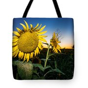 Sunflower Evening Tote Bag