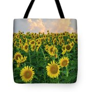Sunflower Faces At Sunset Tote Bag