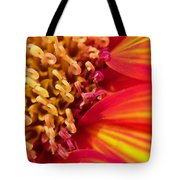 Sunflower Fire 4 Tote Bag