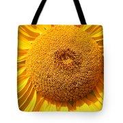Sunflower Head  Tote Bag