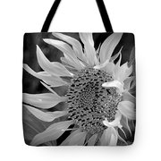 Sunflower In Contrast Tote Bag