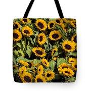 Sunflower Near Van Gogh Museum Tote Bag