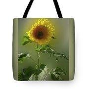 sunflower No. 10 Tote Bag