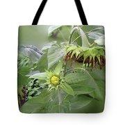 sunflower No.7 Tote Bag