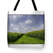 Sunflower Row Tote Bag