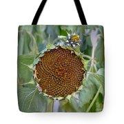 Sunflower Seedhead Tote Bag