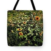 Sunflower Stalks Tote Bag