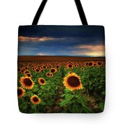 Sunflower Storms Tote Bag
