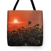 Sunflower Sundown Tote Bag