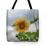 Sunflowers 2018-1 Tote Bag
