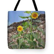 Sunflowers And A Stone Wall Tote Bag