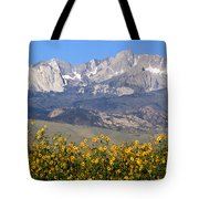 2a6742-sunflowers And Mount Humphreys  Tote Bag