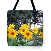Sunflowers And Pine Cones Tote Bag by Will Borden