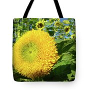 Sunflowers Art Prints Sun Flower Giclee Prints Baslee Troutman Tote Bag