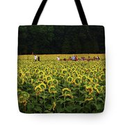 Sunflowers Everywhere Tote Bag