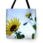 Sunflowers In Fall Tote Bag