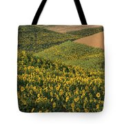 Sunflowers In The Palouse Tote Bag