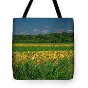 Sunflowers Weldon Spring Mo_dsc9830_16 Tote Bag