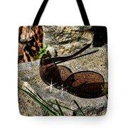 Sunglasses On Stone Tote Bag