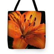 Sunkissed Lily Tote Bag