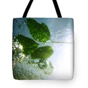 Sunleaf No. 3 Tote Bag