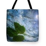 Sunleaf No.2 Tote Bag