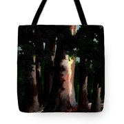 Sunlight And Shadows - Eucalyptus Majesties Tote Bag