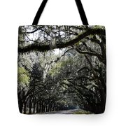 Sunlight And Shadows On Live Oaks Tote Bag