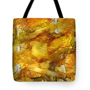 Sunlight Dancing In The Aspen Forest Tote Bag