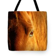 Sunlight Eyes Tote Bag