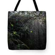 Sunlight Falling Into Glen With Bright Leaves, Vertical Tote Bag