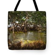 Sunlight In Mangrove Forest Tote Bag