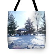 Sunlight In Winter Tote Bag