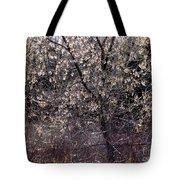 Sunlight Magic Tote Bag