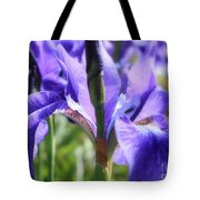 Sunlight On Blue Irises Tote Bag by Carol Groenen