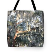 Sunlight On Mossy Tree Tote Bag