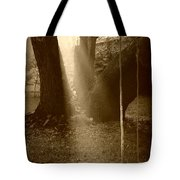 Sunlight On Swing - Sepia Tote Bag