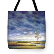 Sunlight On The Marshes 18x24 Tote Bag