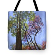 Sunlight On Upper Branches Tote Bag by John Lautermilch
