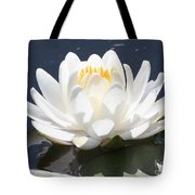 Sunlight On Water Lily Tote Bag
