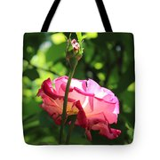 Sunlight Through A Pink Rose Tote Bag