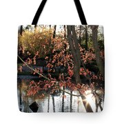 Sunlight Through Japanese Maple Tote Bag