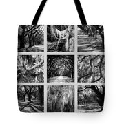Sunlight Through Live Oaks Collage Tote Bag