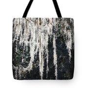Sunlight Through Spanish Moss Tote Bag