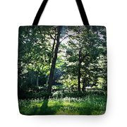 Sunlight Through Trees And Fence Tote Bag