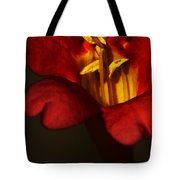 Sunlit Attraction Tote Bag