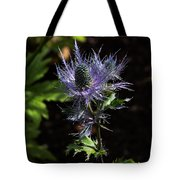 Sunlit Bloom Of Alpine Sea Holly Tote Bag