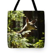 Sunlit Deer Friend Tote Bag