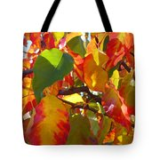 Sunlit Fall Leaves Tote Bag