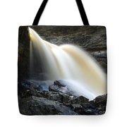 Sunlit Falls Tote Bag
